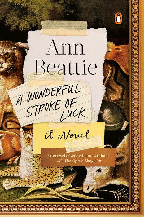 Cover of A Wonderful Stroke of Luck by Ann Beattie